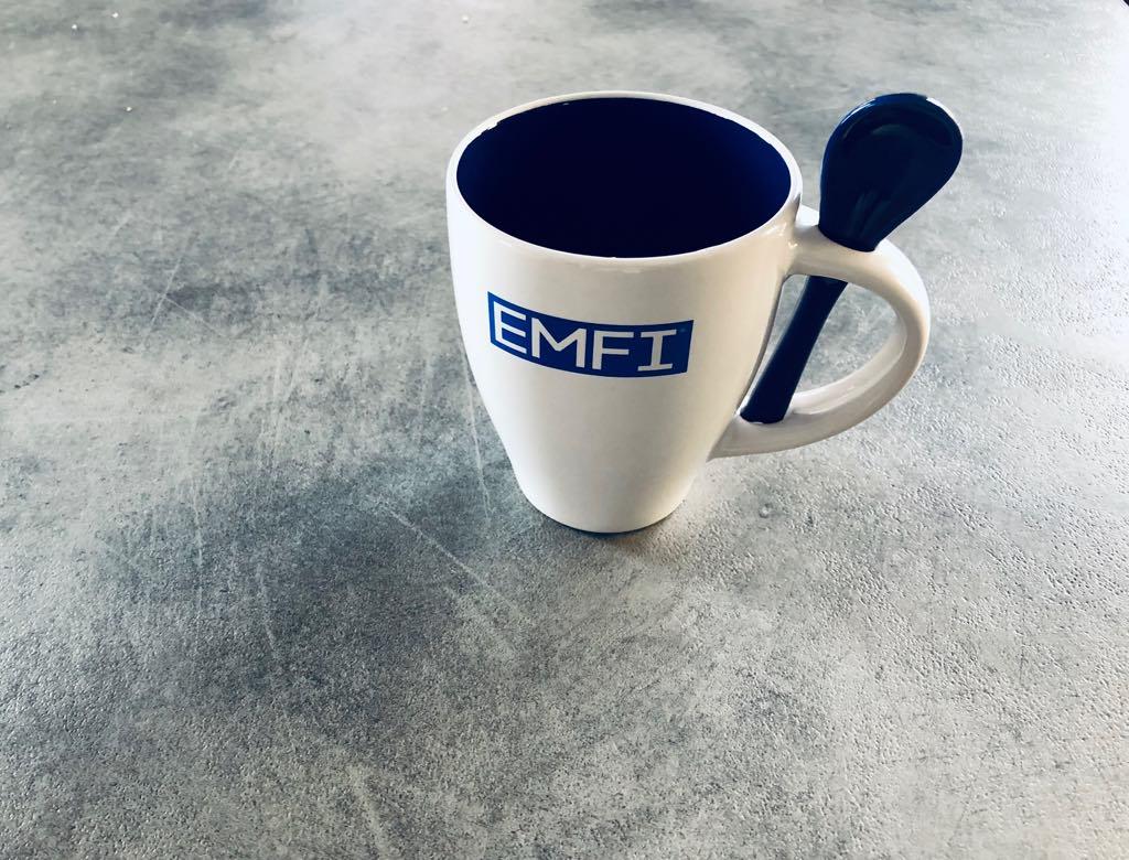 EMFI CUP